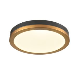 Temagami 12 Inch Flush Mount