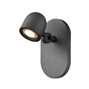 Pond Inlet Outdoor Sconce